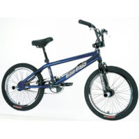 Haro Mirra Flair (2002)