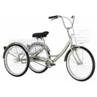 KHS Tricycle (2003)
