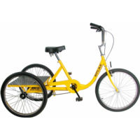 Sun Bicycles Atlas Cargo Trike (2003)