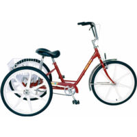 Sun Bicycles Deluxe Trike (2003)