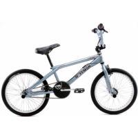 Hoffman Bikes Star Condor (2002)