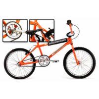 Hoffman Bikes Pro Flash (2001)