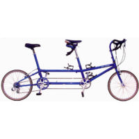 Bike Friday Tandem Traveler XL Ultegra (2001)