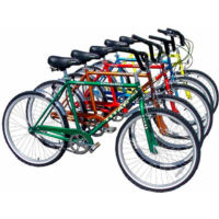 Titan Bicycles Docksider Classic (2002)