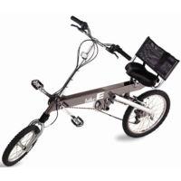 BikeE FX (2001)