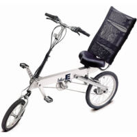 BikeE RX - FS (2001)