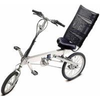 BikeE RX (2001)