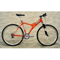 Mountain Cycle Moho STS (1999)