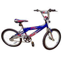 X-Games 20-in Radius BMX Bicycle 2001 30501