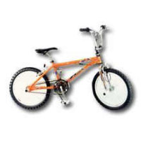 Royce Union 20-in Clash Freestyle Bike Boys 9036-19