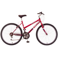 Quasar Raptor Mountain Bike Women