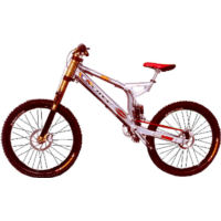 Rotec Pro DH (2002)